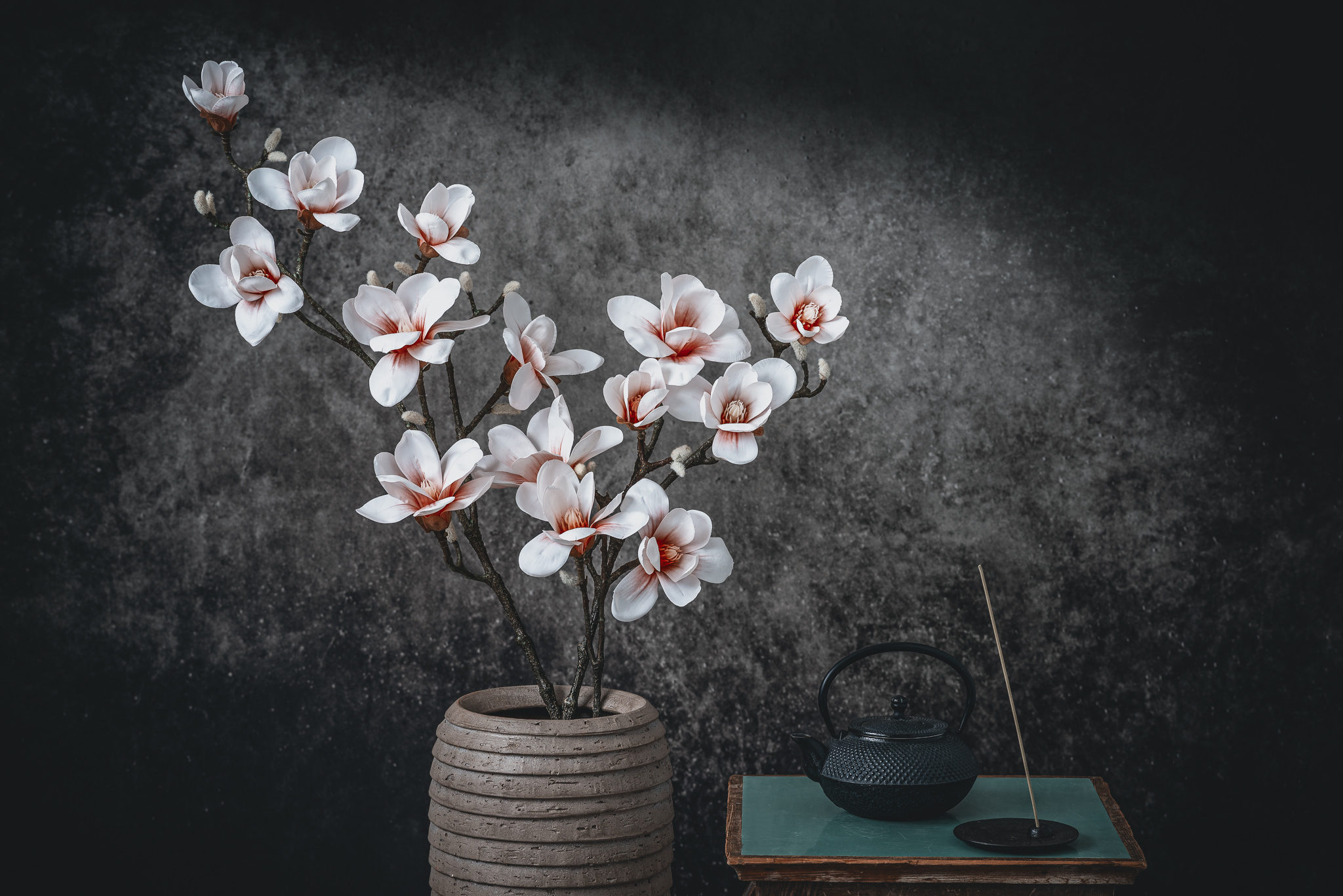 Magnolias in Japan Still Life Photograph as Cover Art